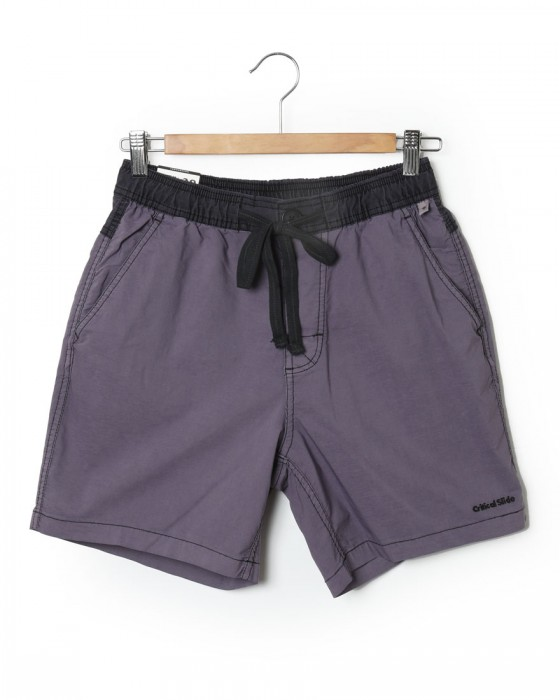 The Critical Slide Society/TCSSボードショーツ【PLAIN JANE BOARDSHORT  17inch】c0